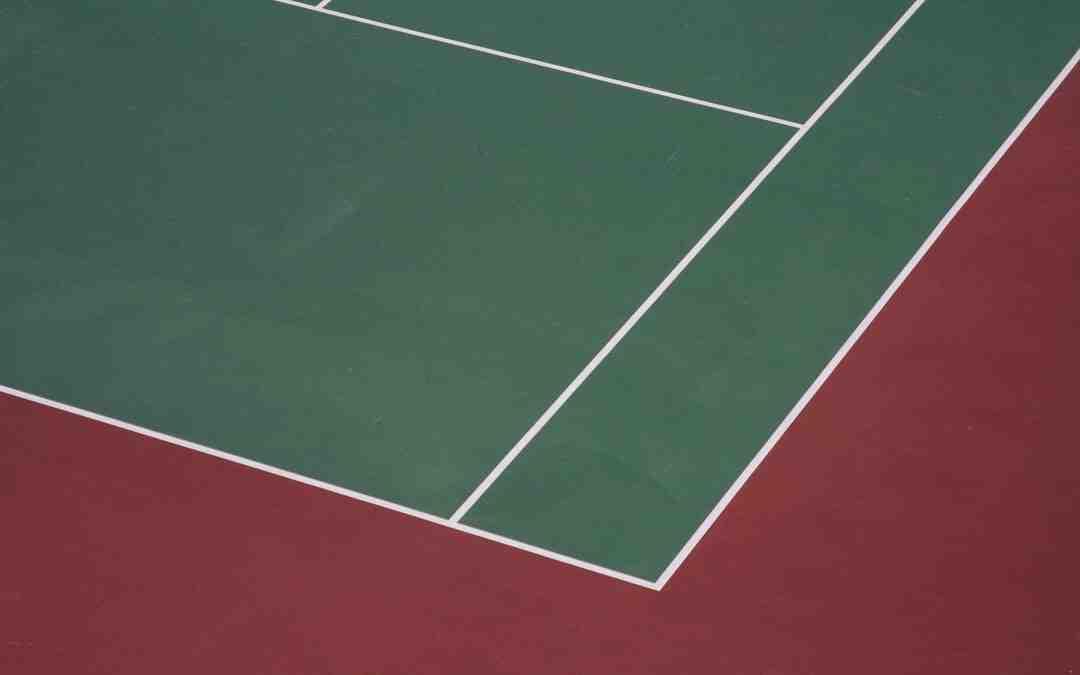 Classement joueur tennis roland garros