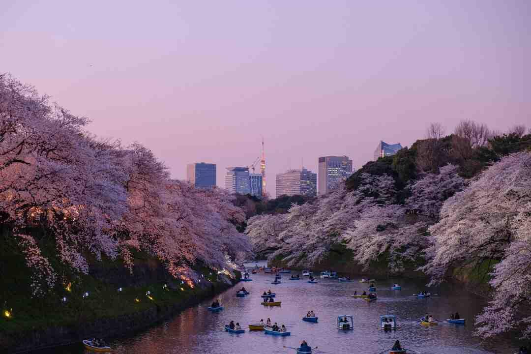 Jeux olympique de tokyo 2021