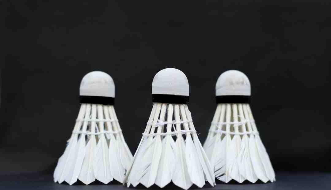 Combien gagne un joueur de badminton
