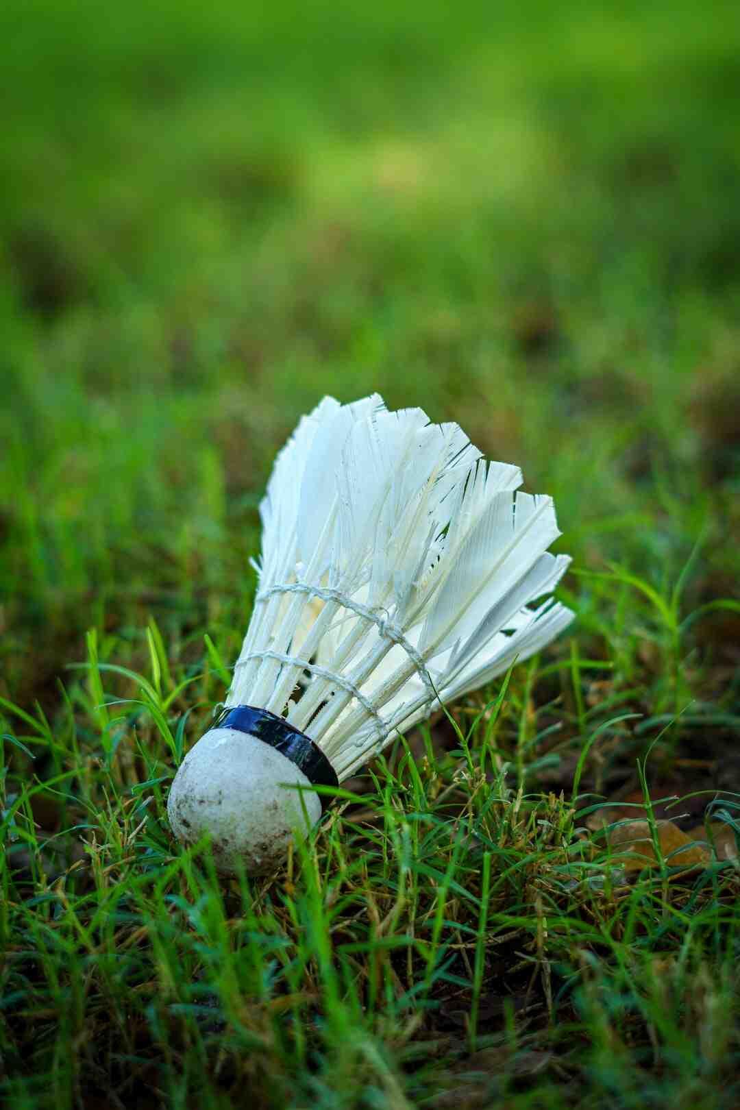 Quel pays dominé le badminton mondial ?